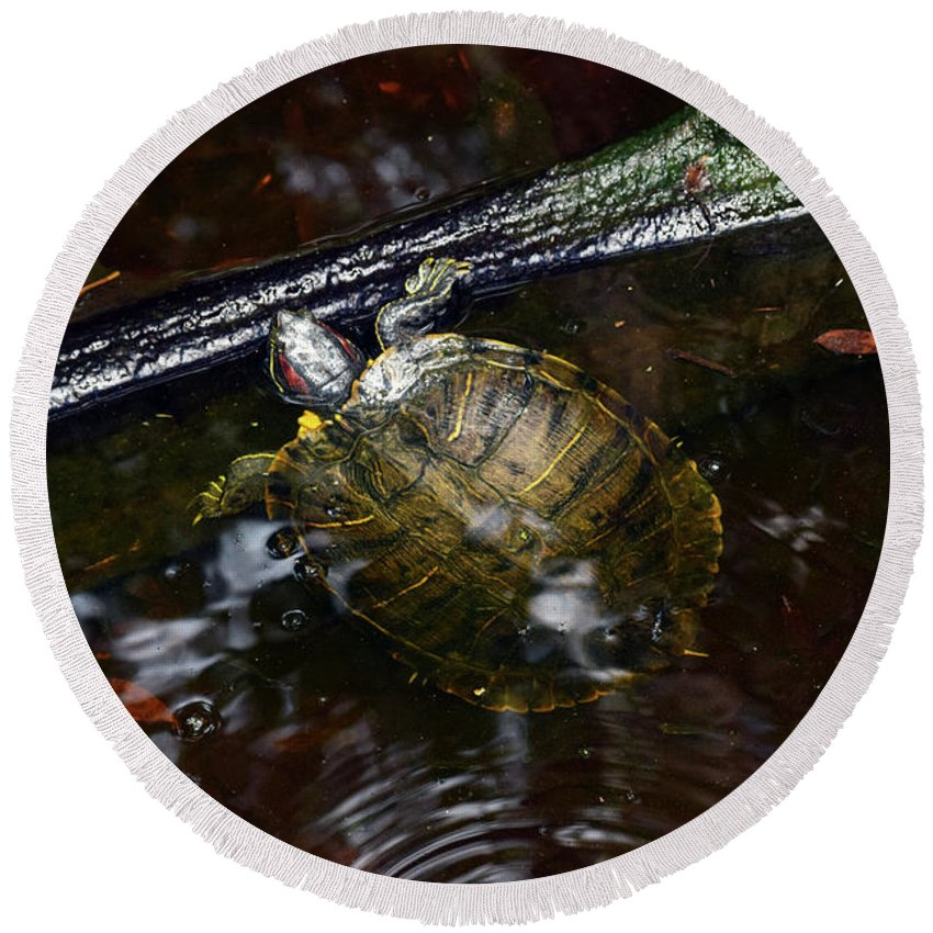 Turtle Round Beach Towel featuring the photograph Turtle And The Stick by William Tasker