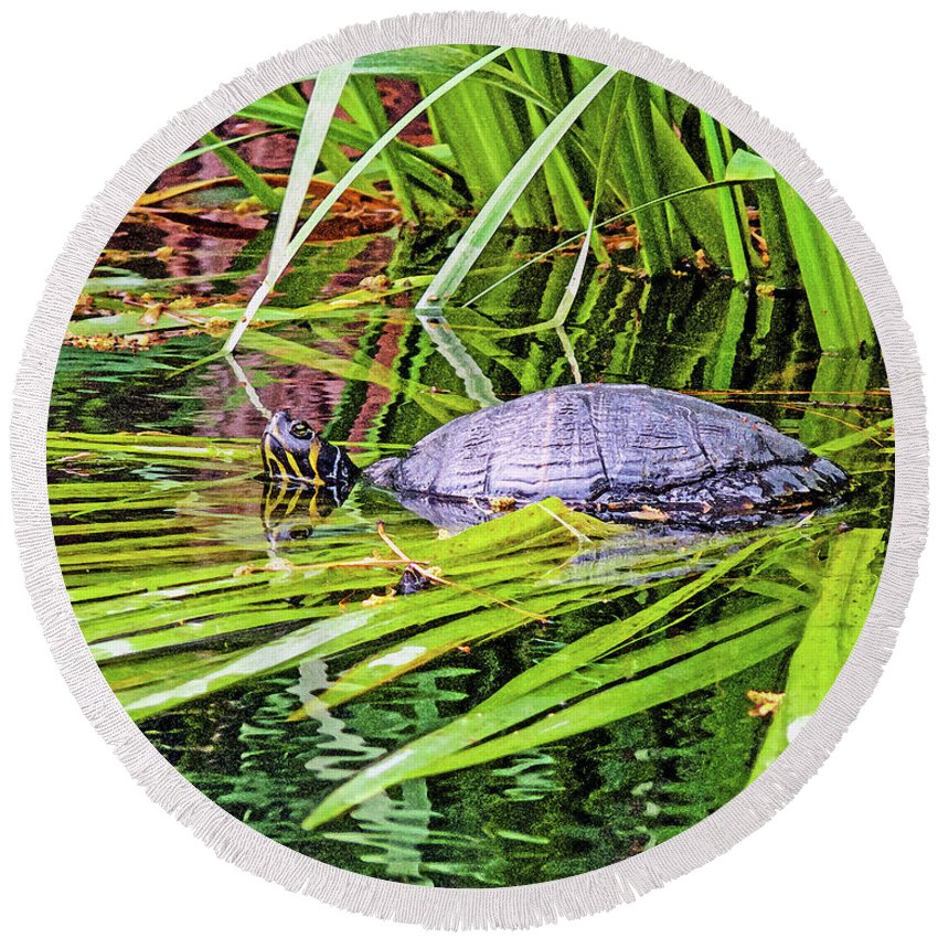 Turtle Round Beach Towel featuring the photograph Turtle Pond by Linda Vodzak