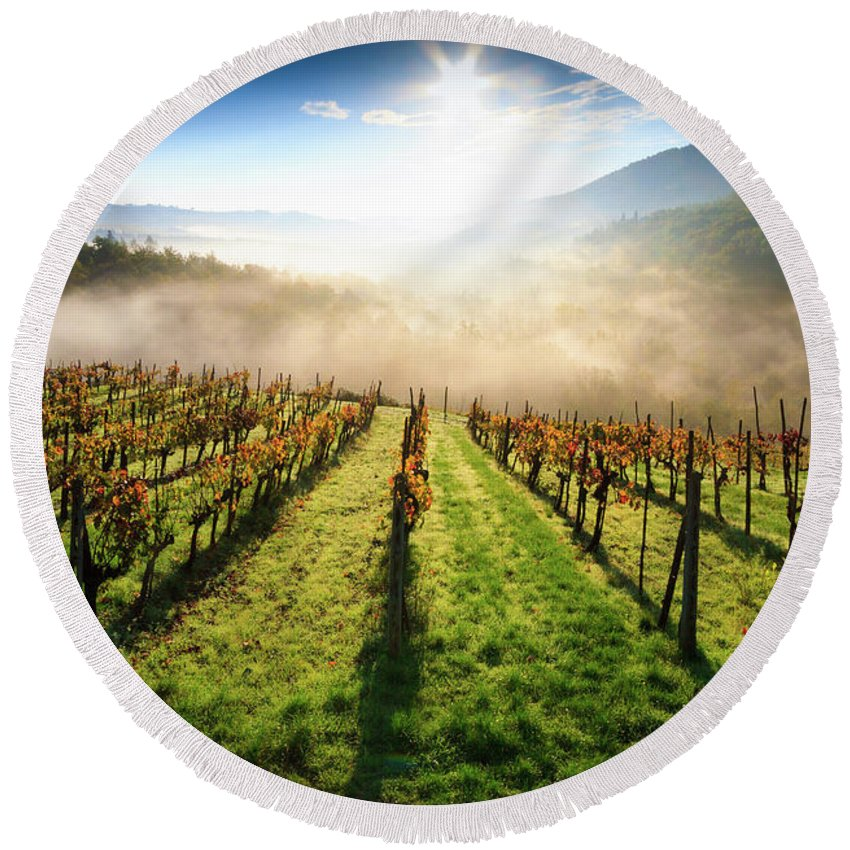 Hill; Italian; Foggy; Sunrise; Fog; Agriculture; Autumn; Italy; European; Leaf; Tuscan; Vine; Vineyard; Morning; Wine; Countryside; Color; Sunset; Scenic; Chianti; Nature; Europe; Tuscany; Landscape; Greve Round Beach Towel featuring the photograph Tuscan Sunrise by Alessandro Landi
