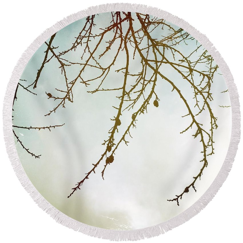Twigs Round Beach Towel featuring the photograph Twigs And Winter Sky Two by Mo Barton