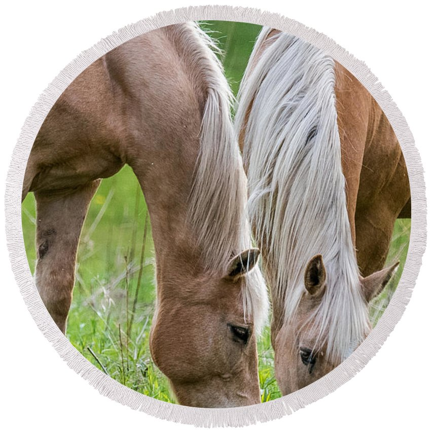 Horse Round Beach Towel featuring the photograph Twins by Paul Freidlund