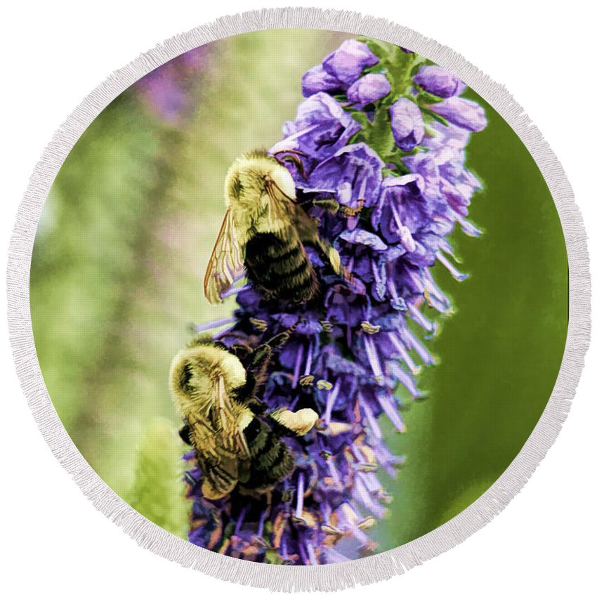 Recent Round Beach Towel featuring the photograph Salvia With Bees by Geraldine Scull