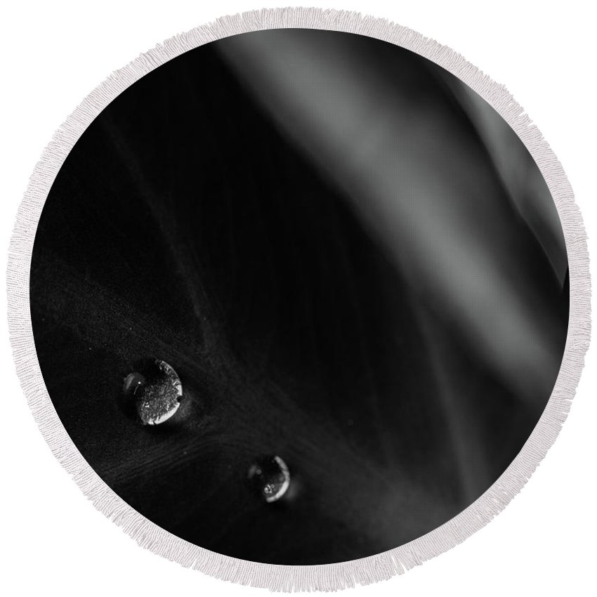 Abstract Round Beach Towel featuring the photograph Two Drops by Bob Orsillo