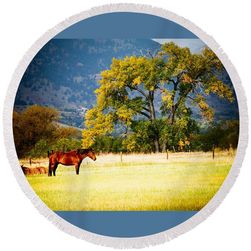 Animal Round Beach Towel featuring the photograph Two Horses by Marilyn Hunt