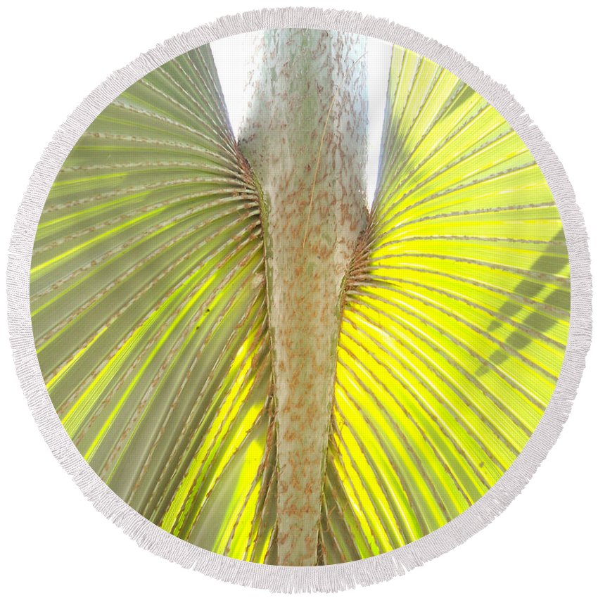 Florida Round Beach Towel featuring the photograph Under The Palm II Gp by Chris Andruskiewicz