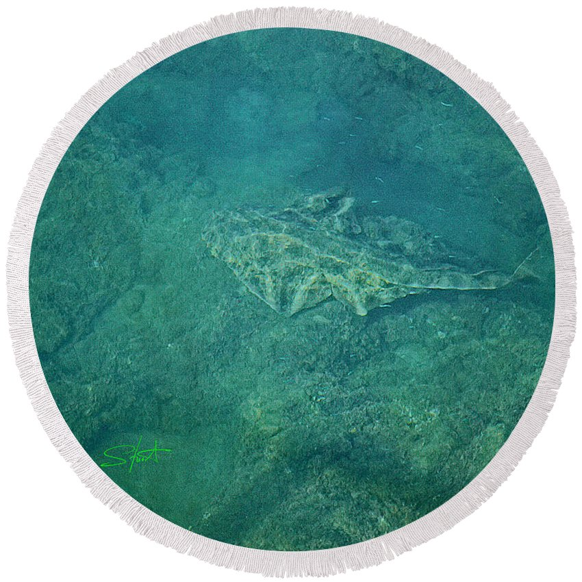 Ocean Round Beach Towel featuring the photograph Under Water View by Charles Stuart