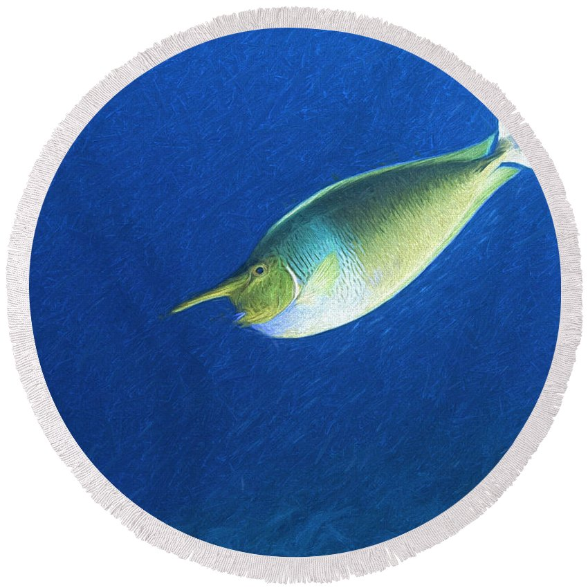 Naso Brevirostris Round Beach Towel featuring the digital art Unicorn Fish 2 by Roy Pedersen