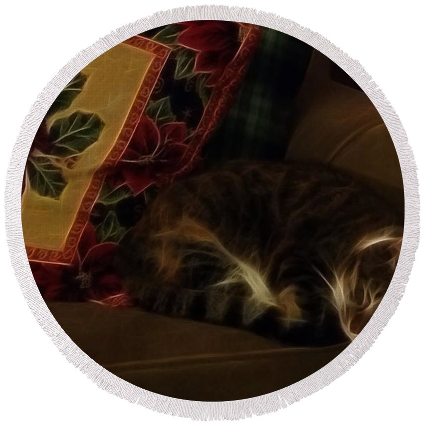 Cats Round Beach Towel featuring the photograph Untitled4 by Phil Haultain
