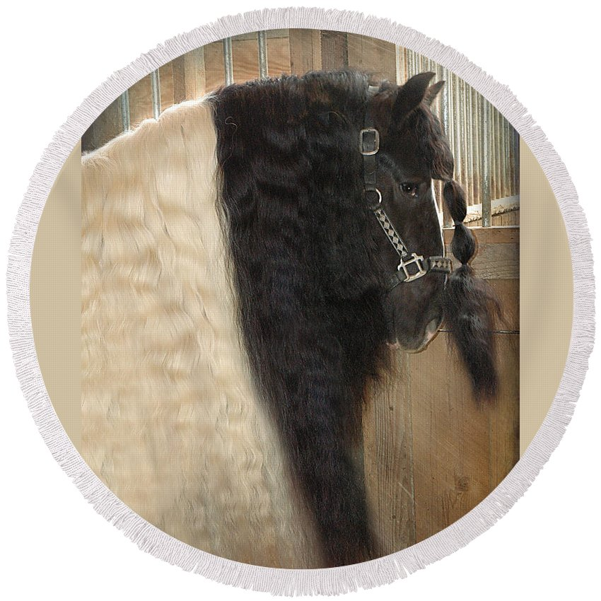 Horse Photographs Round Beach Towel featuring the photograph Valentino's Mane by Fran J Scott
