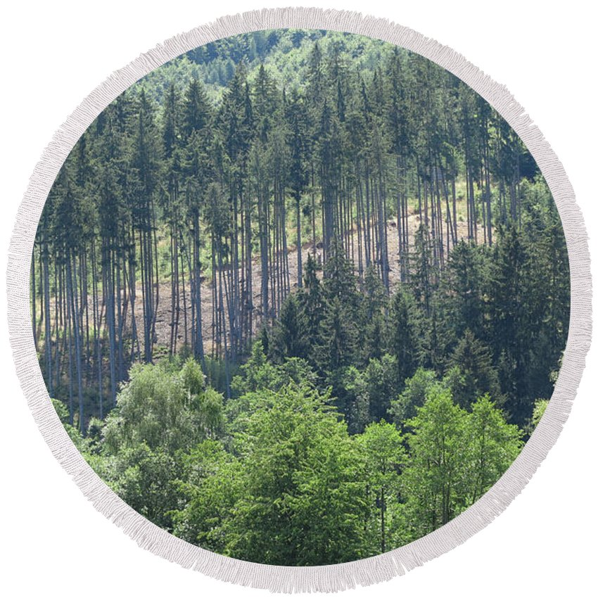 Woods Round Beach Towel featuring the photograph View Of The Mixed Forest by Michal Boubin