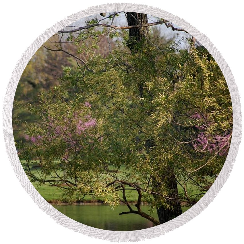 Landscape Round Beach Towel featuring the photograph View Out My Office Window. by David Lane