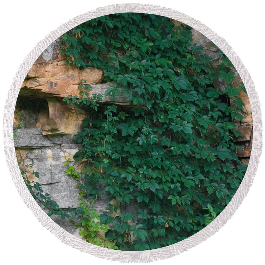 Southern Illinois Round Beach Towel featuring the photograph Vines On The Rocks by John Diebolt