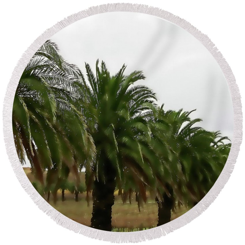 Palm Trees Round Beach Towel featuring the photograph Vinescape by Douglas Barnard