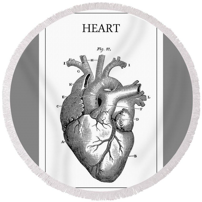 Heart Round Beach Towel featuring the digital art Vintage Anatomical Heart by Daniel Hagerman