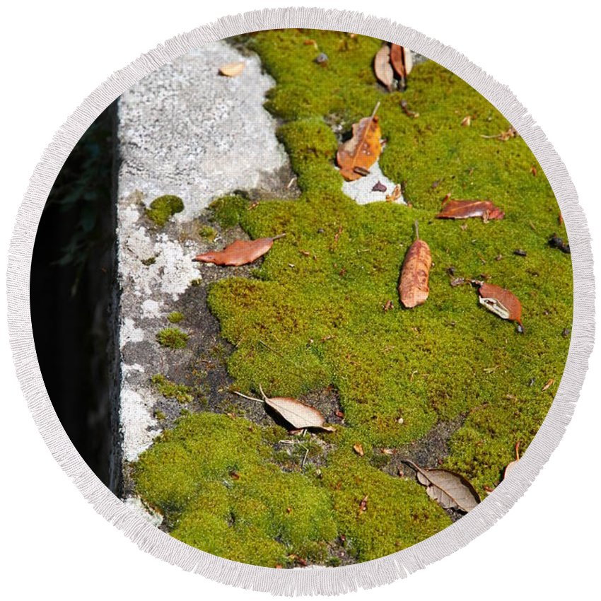 Vintage Round Beach Towel featuring the photograph Vintage Moss by Valentino Visentini