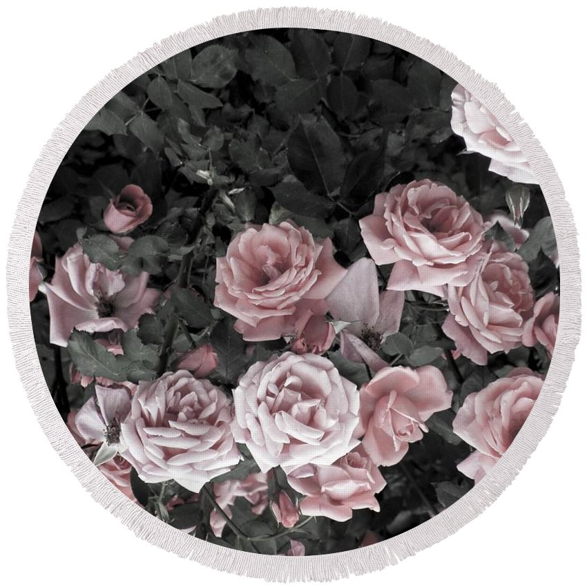 Living Room Round Beach Towel featuring the photograph Vintage Roses In Pink 2 by Johnnie Stanfield