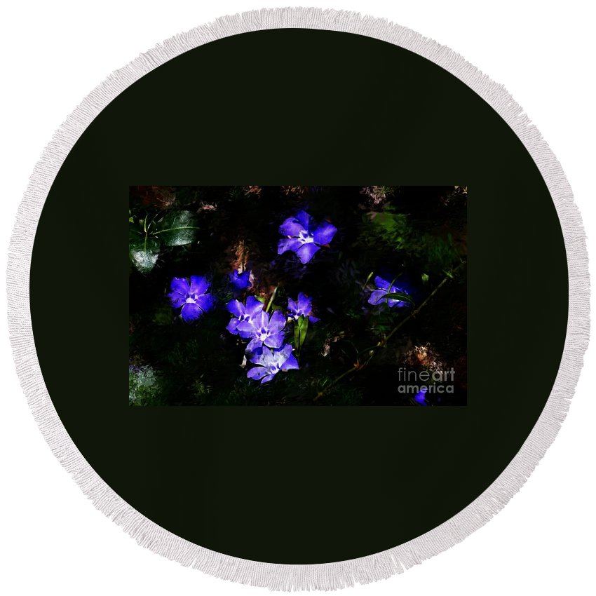 Spring Round Beach Towel featuring the photograph Violet by David Lane