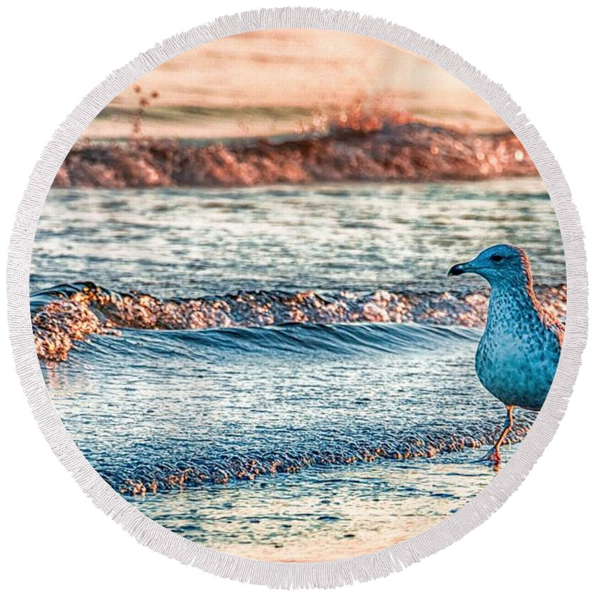 Bird Round Beach Towels