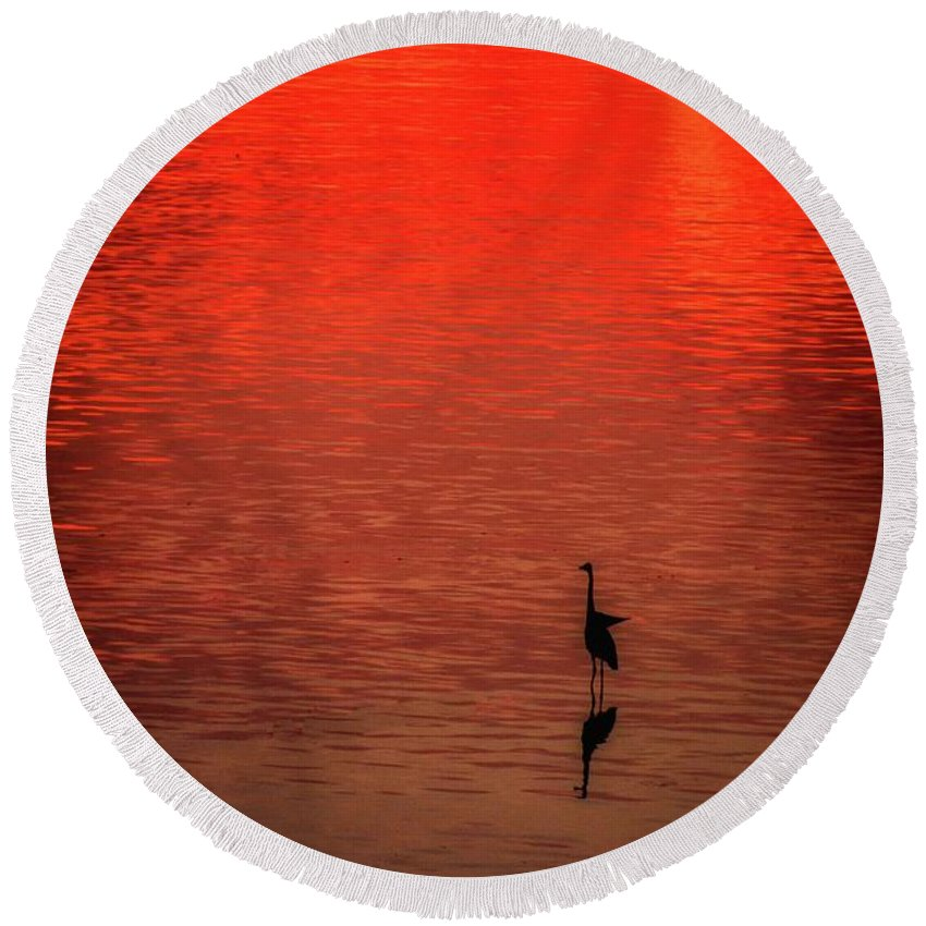 Sunrise Round Beach Towel featuring the photograph Walking On Water by Tommi Del Gaudio