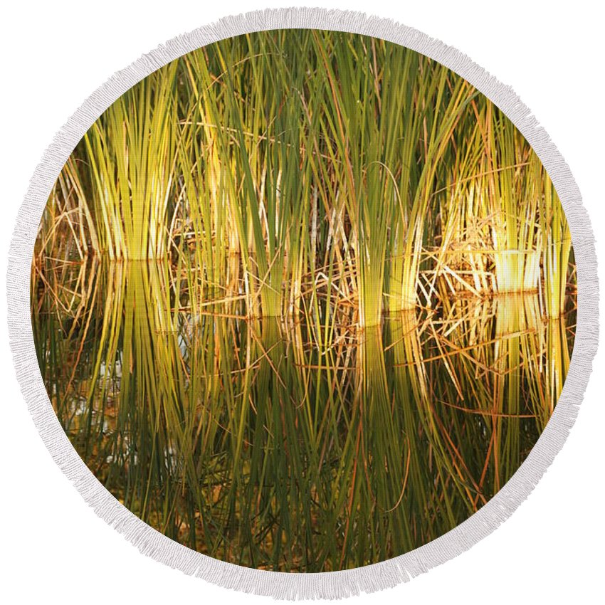 Grass Round Beach Towel featuring the photograph Water Grass In Sunset by Rob Hans