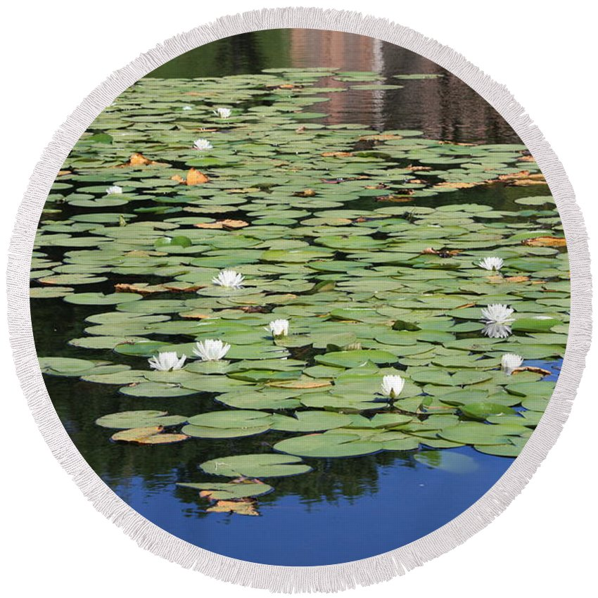 Water Round Beach Towel featuring the photograph Water Lily Pond by Carol Groenen