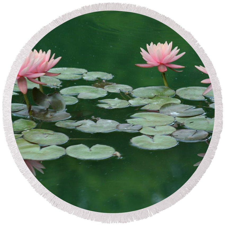 Lily Pad Round Beach Towel featuring the photograph Water Nymph by Sherry Pfeifle