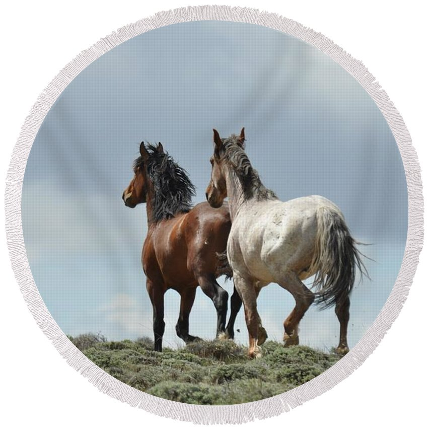 Wild Horses Round Beach Towel featuring the photograph We Will Be Over the Hill in a Few Seconds by Frank Madia