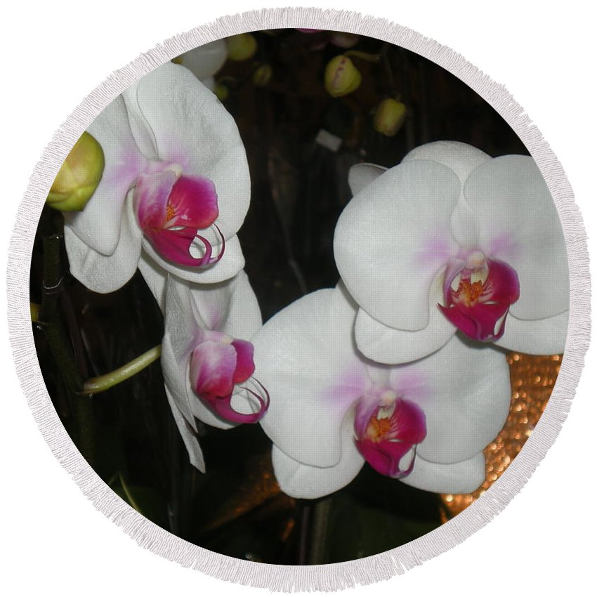 Orchids Round Beach Towel featuring the photograph Wedding Orchids by Kim Prowse