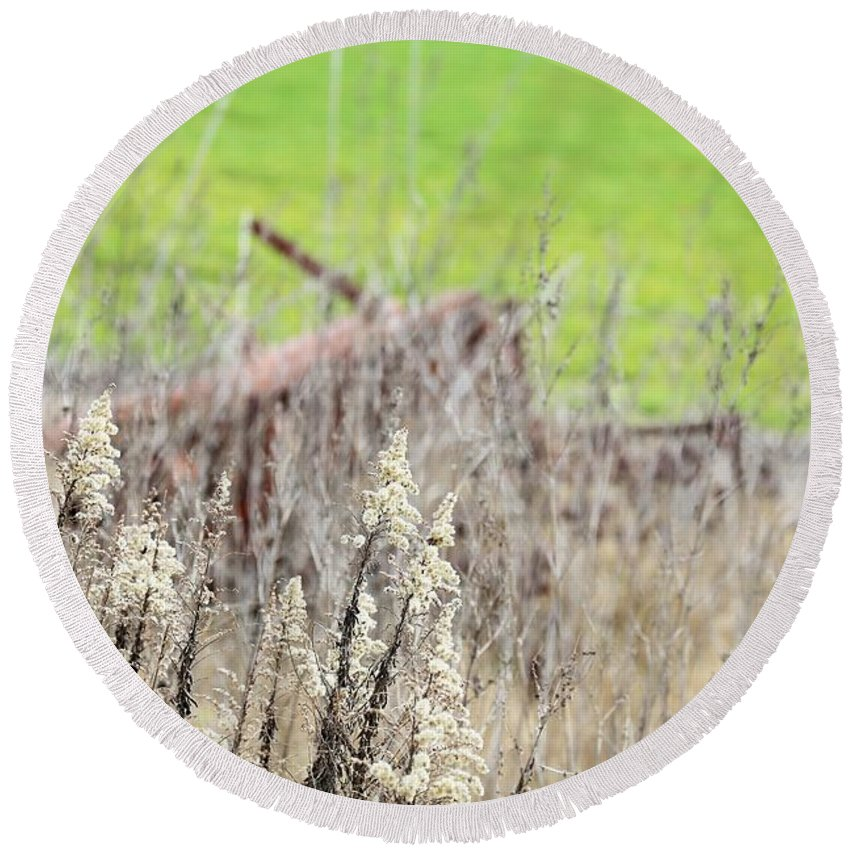 Round Beach Towel featuring the photograph Weeds 008 by Jeff Downs