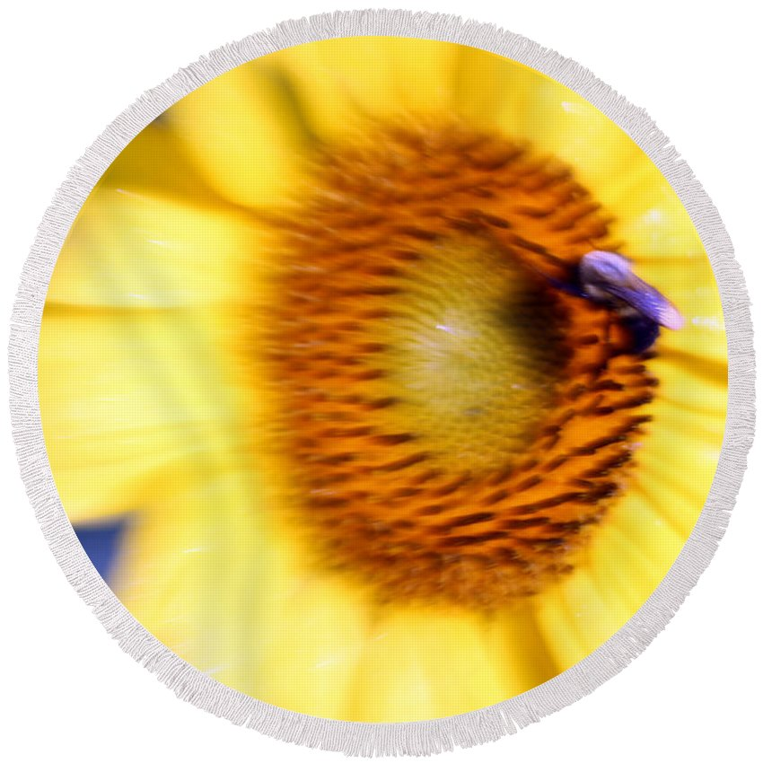 Sun Round Beach Towel featuring the photograph West Flow by Carolyn Stagger Cokley