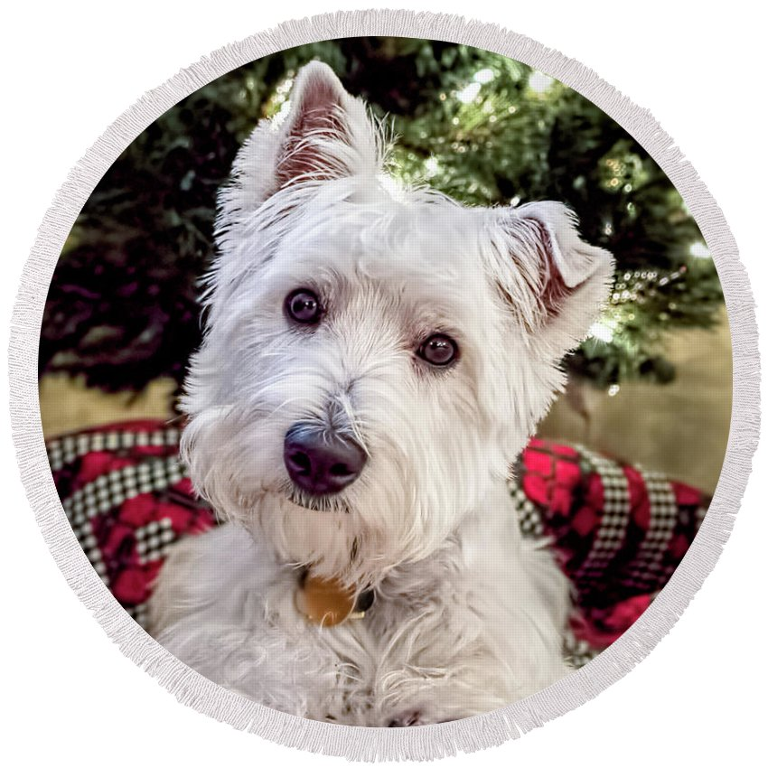 Westie Puppy With Christmas Tree Round Beach Towel for Sale by Wes ...