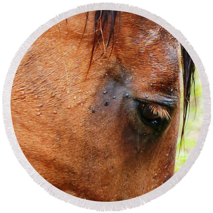 Horse Round Beach Towel featuring the photograph Wet Mane by Carlos Amaro