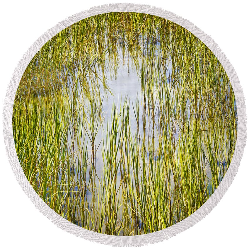 Wetlands Round Beach Towel featuring the photograph Wetlands by Marilyn Hunt