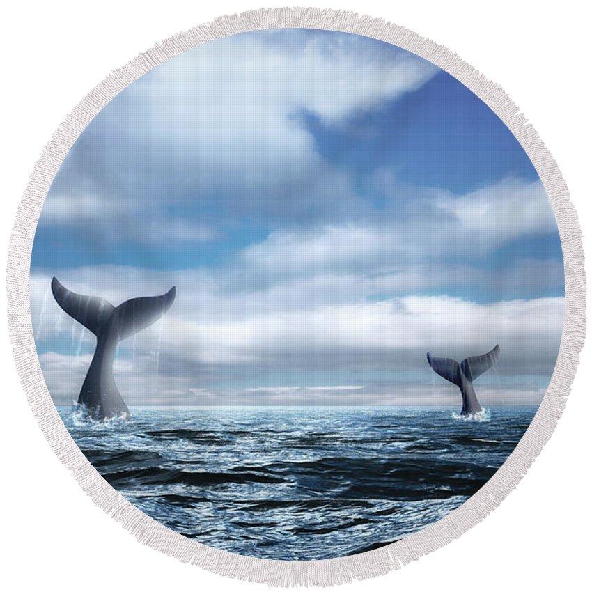 Aquatic Mammals Round Beach Towels