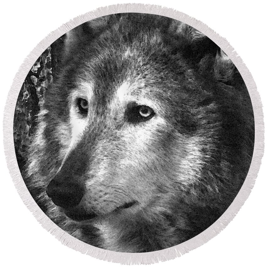 Wolf Round Beach Towel featuring the photograph What Is A Wolf Thinking by Karol Livote