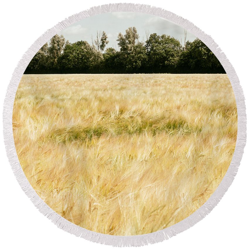 Wheat Round Beach Towel featuring the photograph Wheat Field by Pati Photography