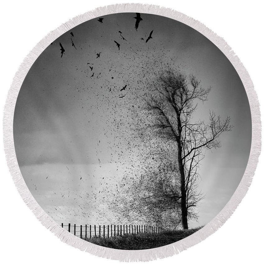 Black And White Round Beach Towel featuring the photograph When The Darkness Gets Out by Sandra Parlow
