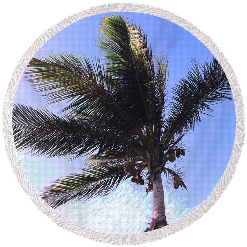 Palm Round Beach Towel featuring the photograph Where Coconuts Come From by Ian MacDonald