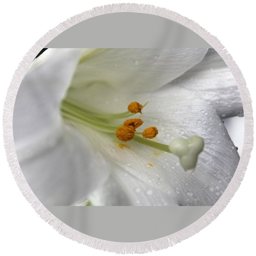 Flower Round Beach Towel featuring the photograph White Angel by Munir Alawi