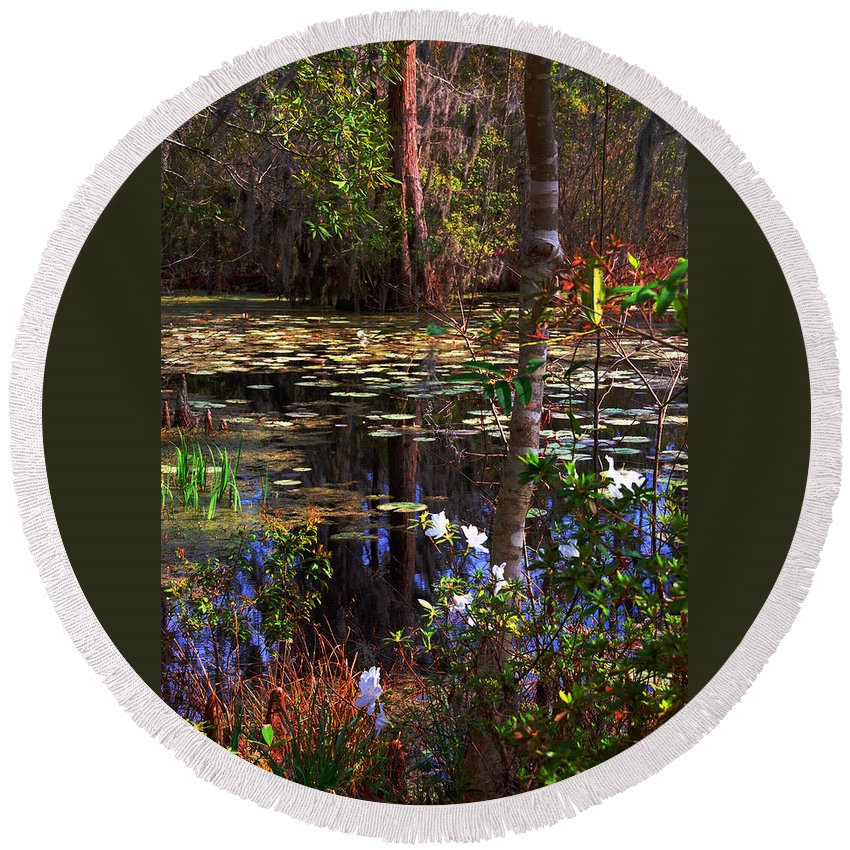 Swamp Round Beach Towel featuring the photograph White Azaleas In The Swamp by Susanne Van Hulst