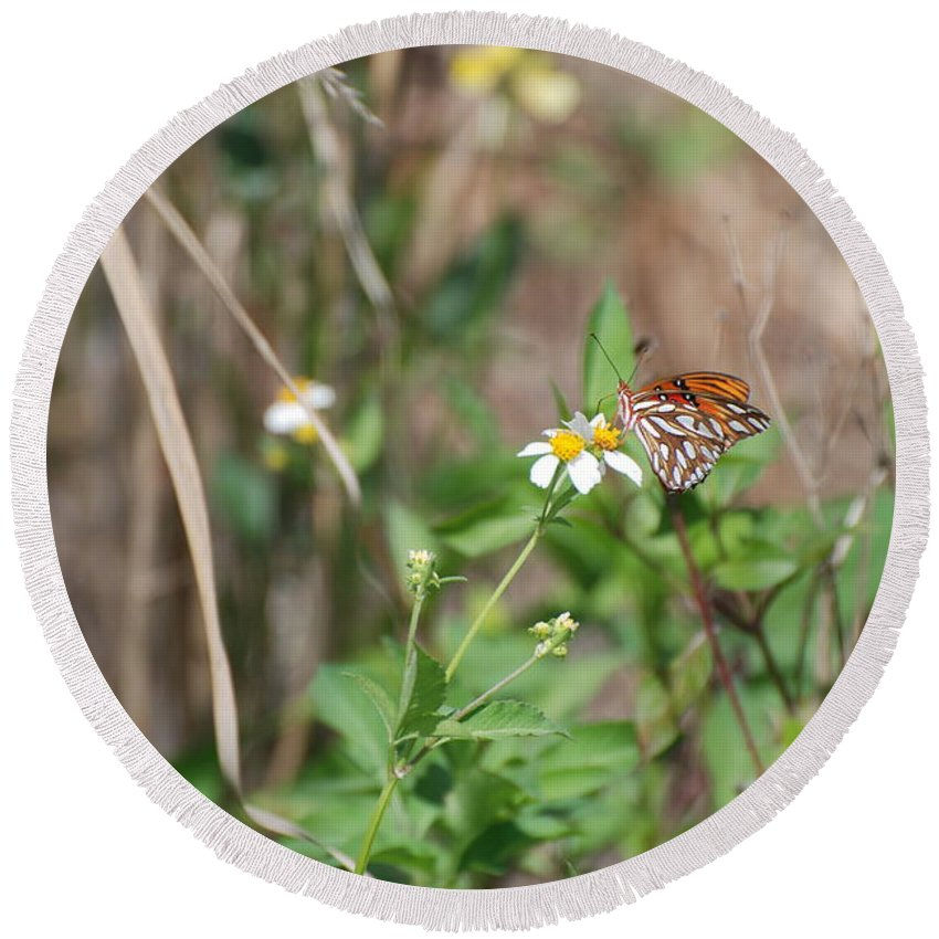 Butterfly Round Beach Towel featuring the photograph White Butterfly by Rob Hans