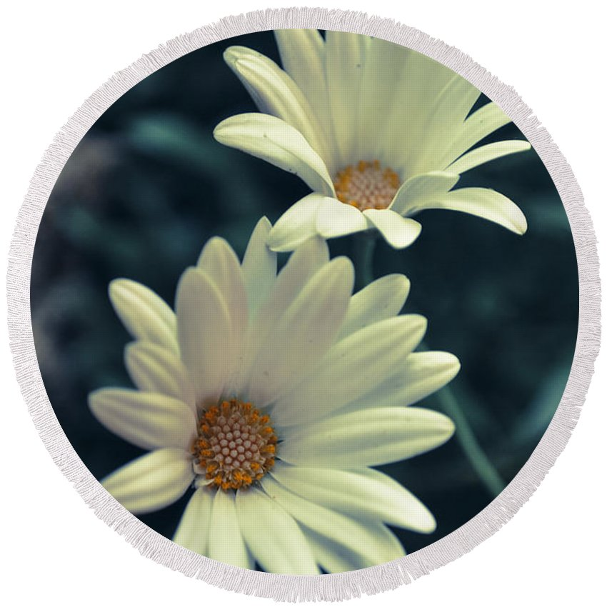 Photograph Round Beach Towel featuring the photograph White Flowers by Ignacio Leal Orozco
