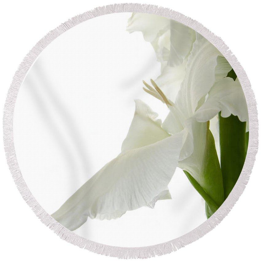 Botanical Round Beach Towel featuring the photograph White Gladiola by Ann Garrett