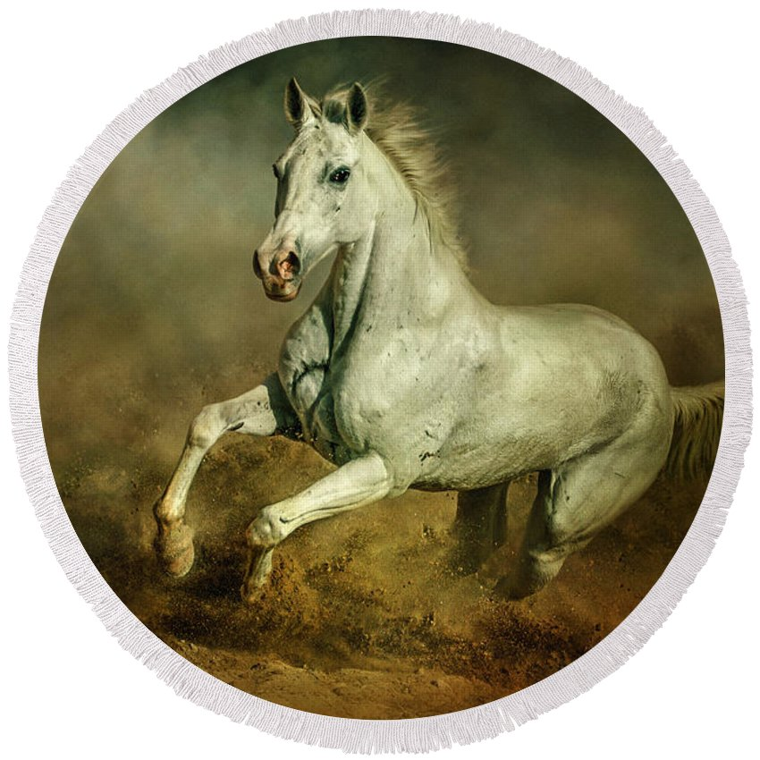 Action Round Beach Towel featuring the photograph White Horse Running Wild Equestrian Art Photography by Dimitar Hristov