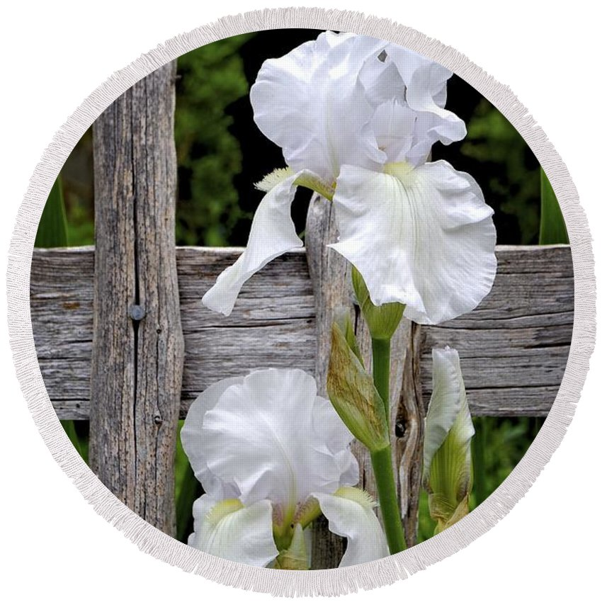 Iris Round Beach Towel featuring the photograph White Iris by Gary Richards