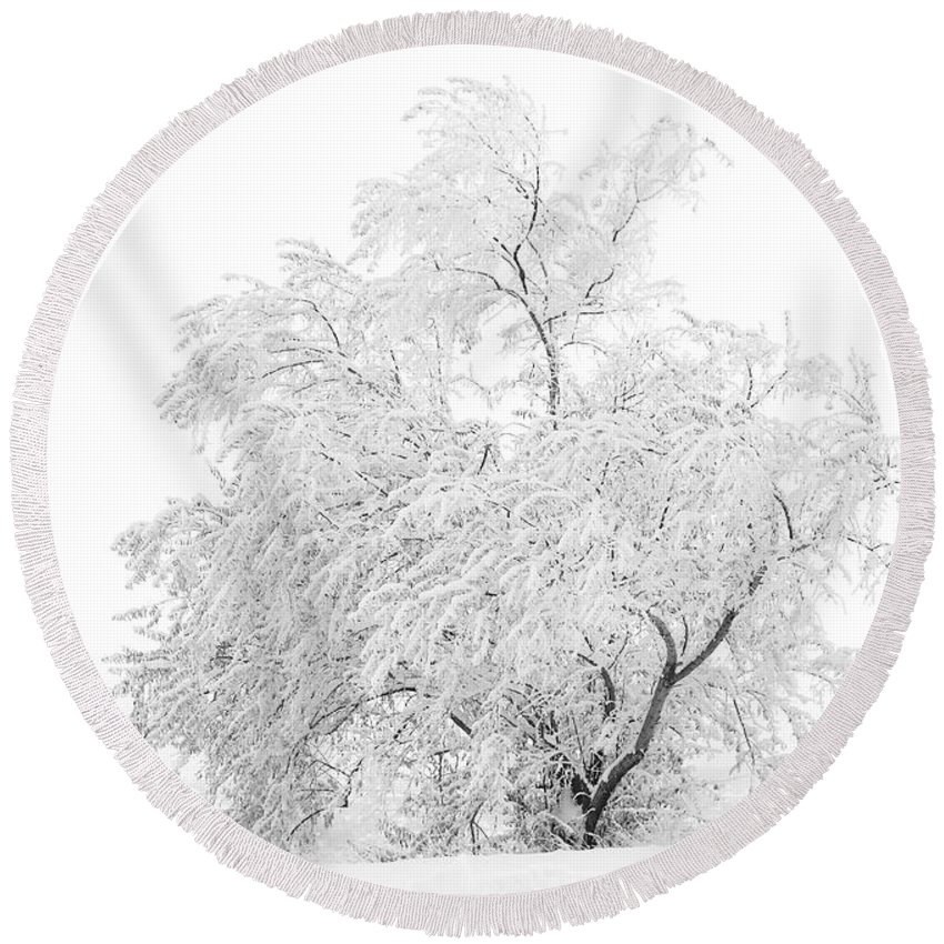 Snow Round Beach Towel featuring the photograph White on White by Marilyn Hunt