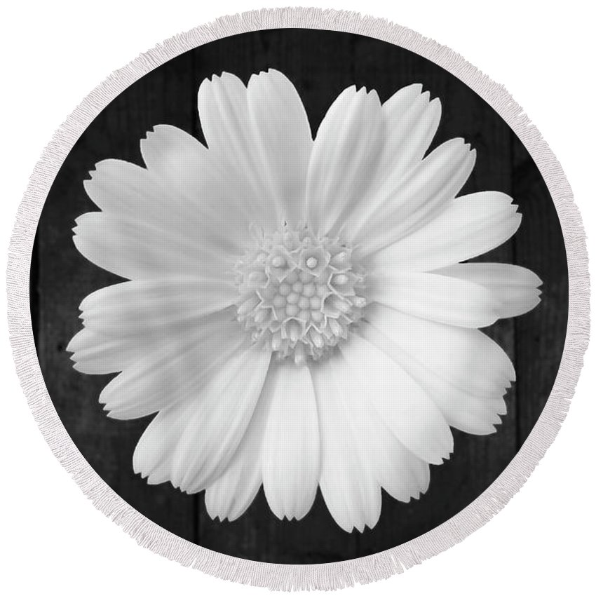 Flower Round Beach Towel featuring the photograph White On Wood by Johanna Hurmerinta