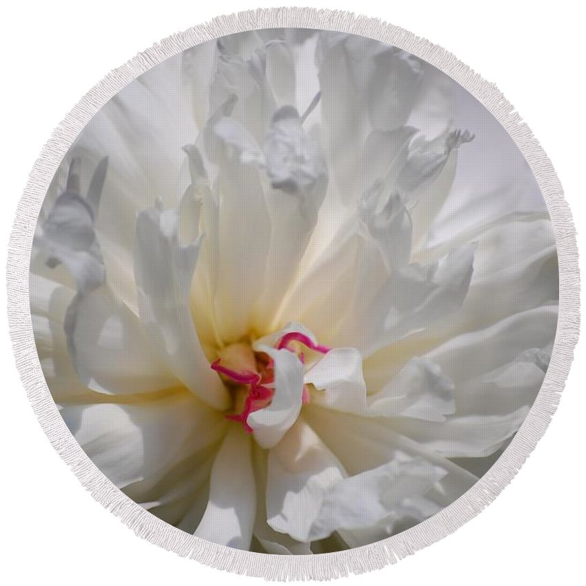Digital Photography Round Beach Towel featuring the photograph White Peony by David Lane