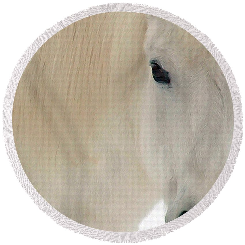 White Pony Round Beach Towel featuring the photograph White Pony In Profile by Wayne King