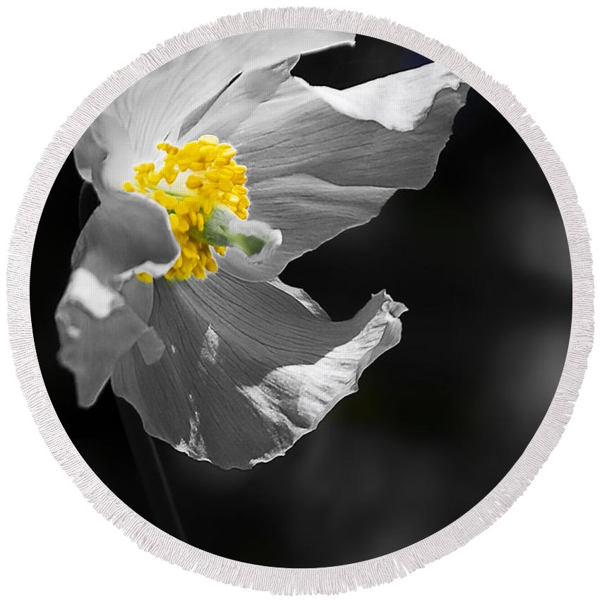 Flower Round Beach Towel featuring the photograph White Poppy by Svetlana Sewell